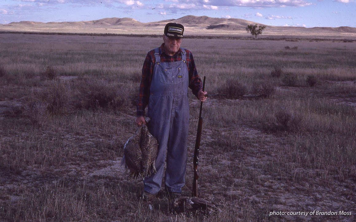 Older man upland hunting in Montana with shotgun and large sage grouse.