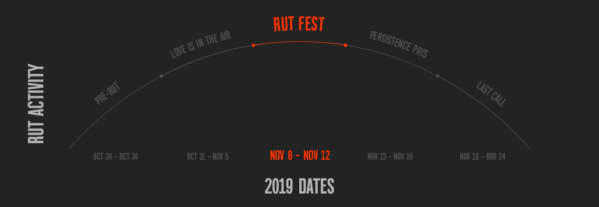 Rut activity chart showing Rut Fest section of bell curve, designed by onX Hunt.