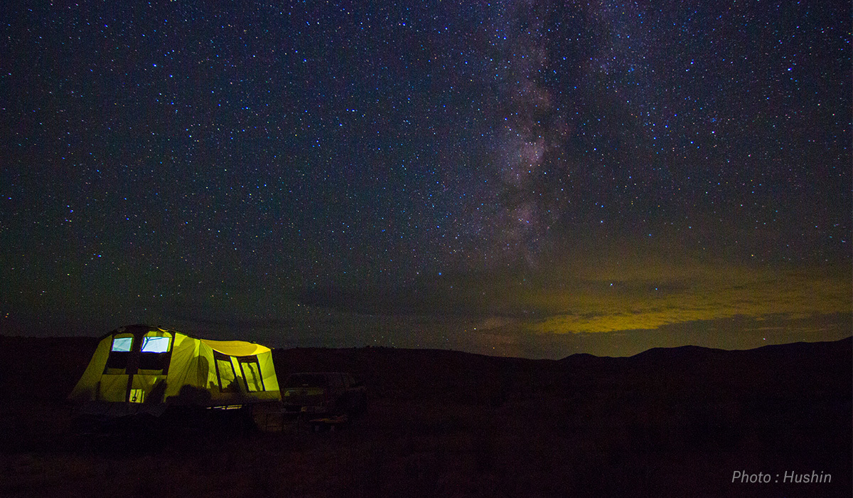Summer nighttime photograph of tent with night sky.