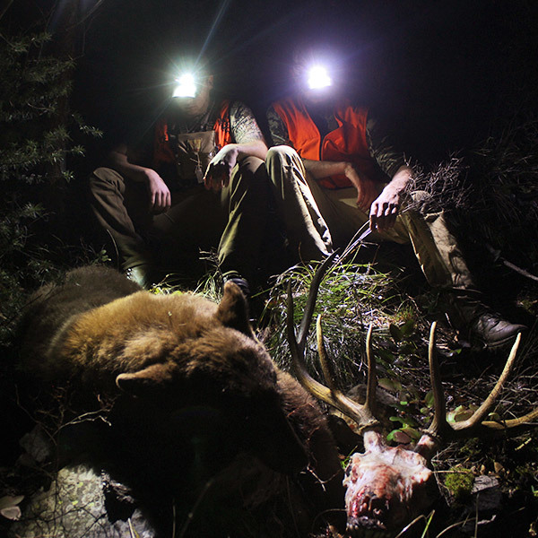 hunters-and-harvests-at-night.jpg?mtime=20170623151500#asset:2746