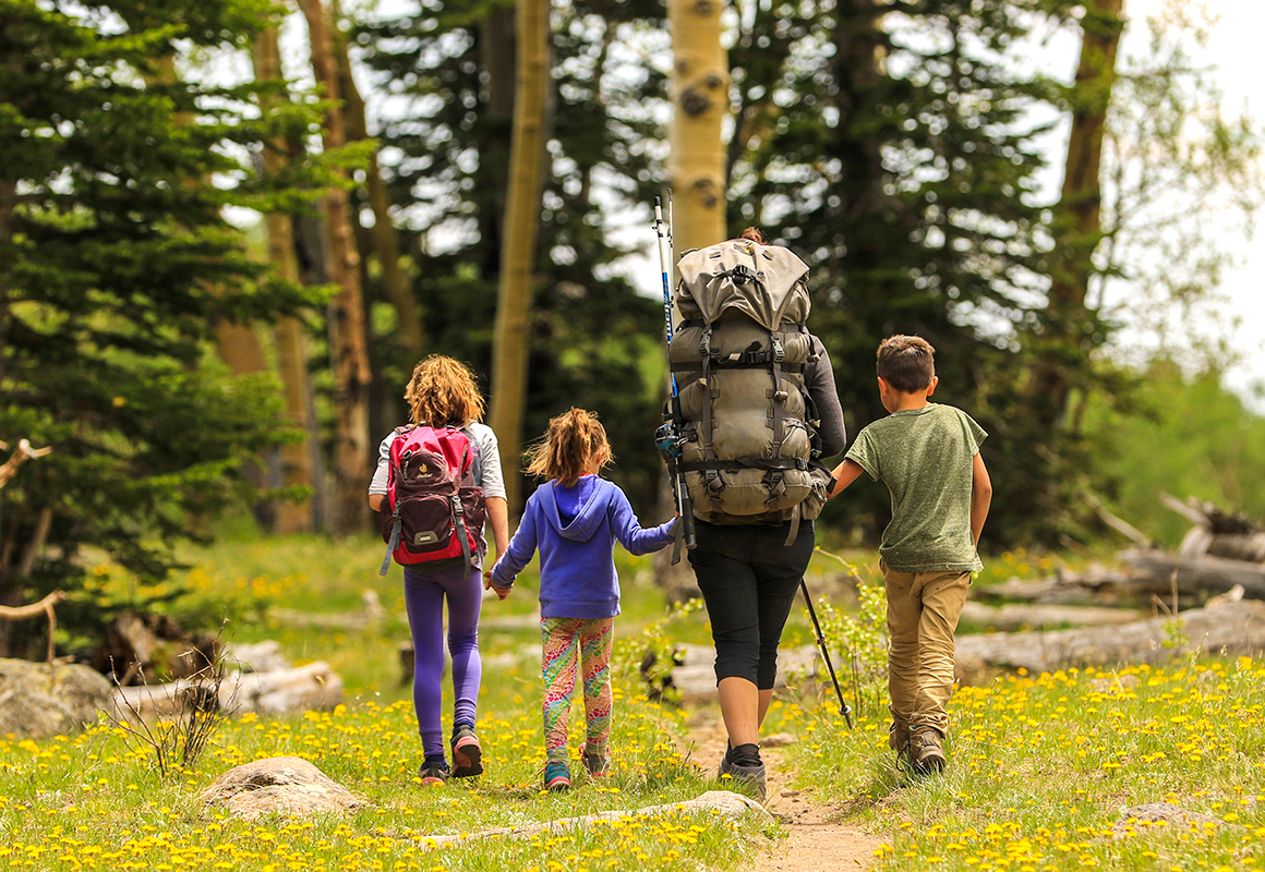Family following hiking trail through woods