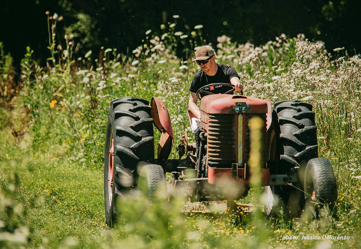 Man on tractor working field foot plot before whitetail deer hunting season.